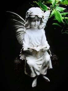 Fairies anyone?